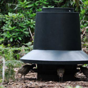Outdoor 45 Gallon Feed Bin Rain Hat