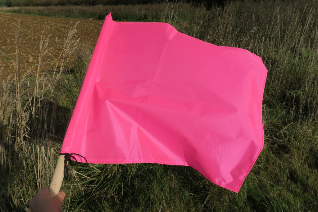 Pink Beaters Flags