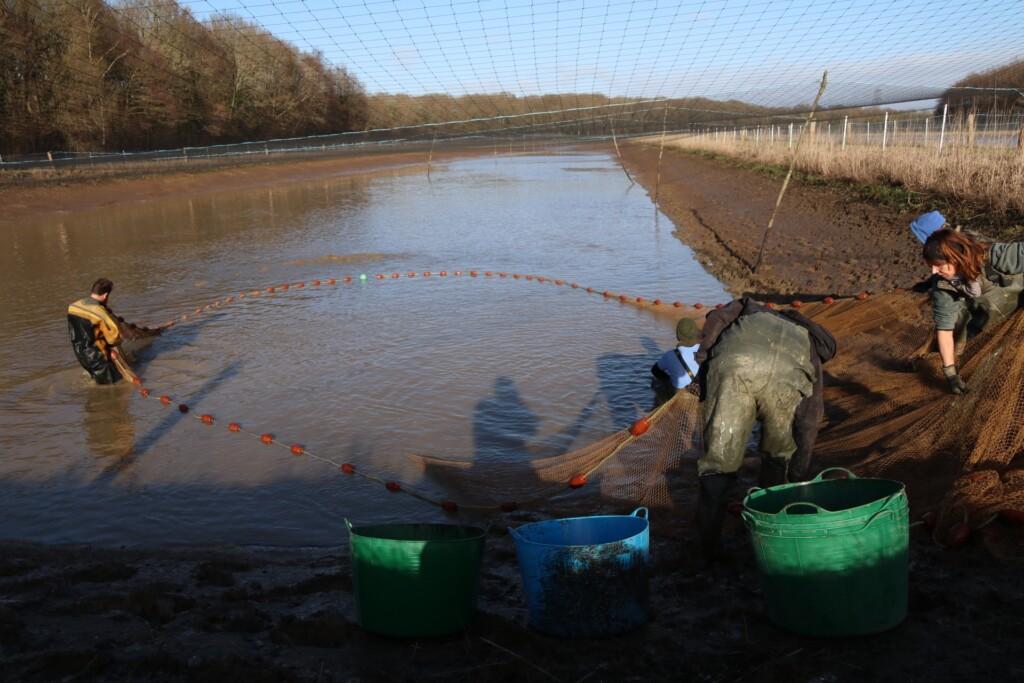 Anti Predator Bird Netting 100mm