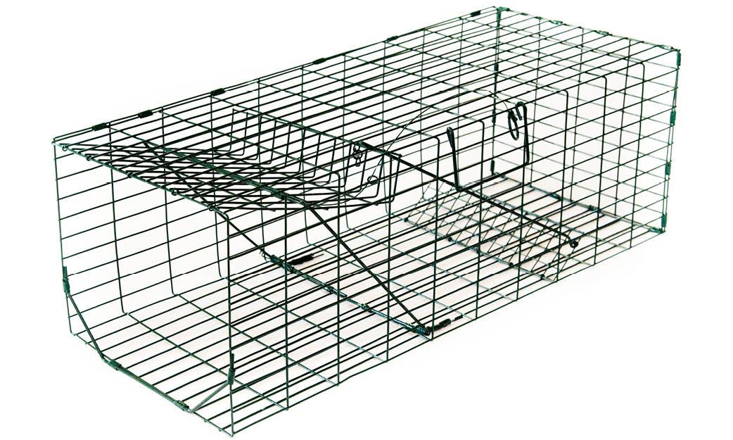 Live Catch Cat Trap