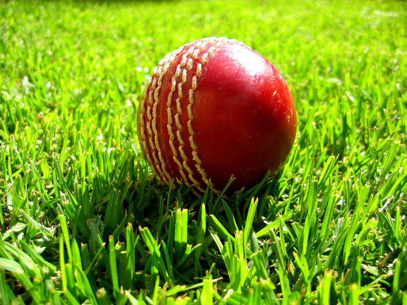 Cricket Ball Stop Netting