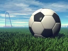 football or rugby perimeter netting