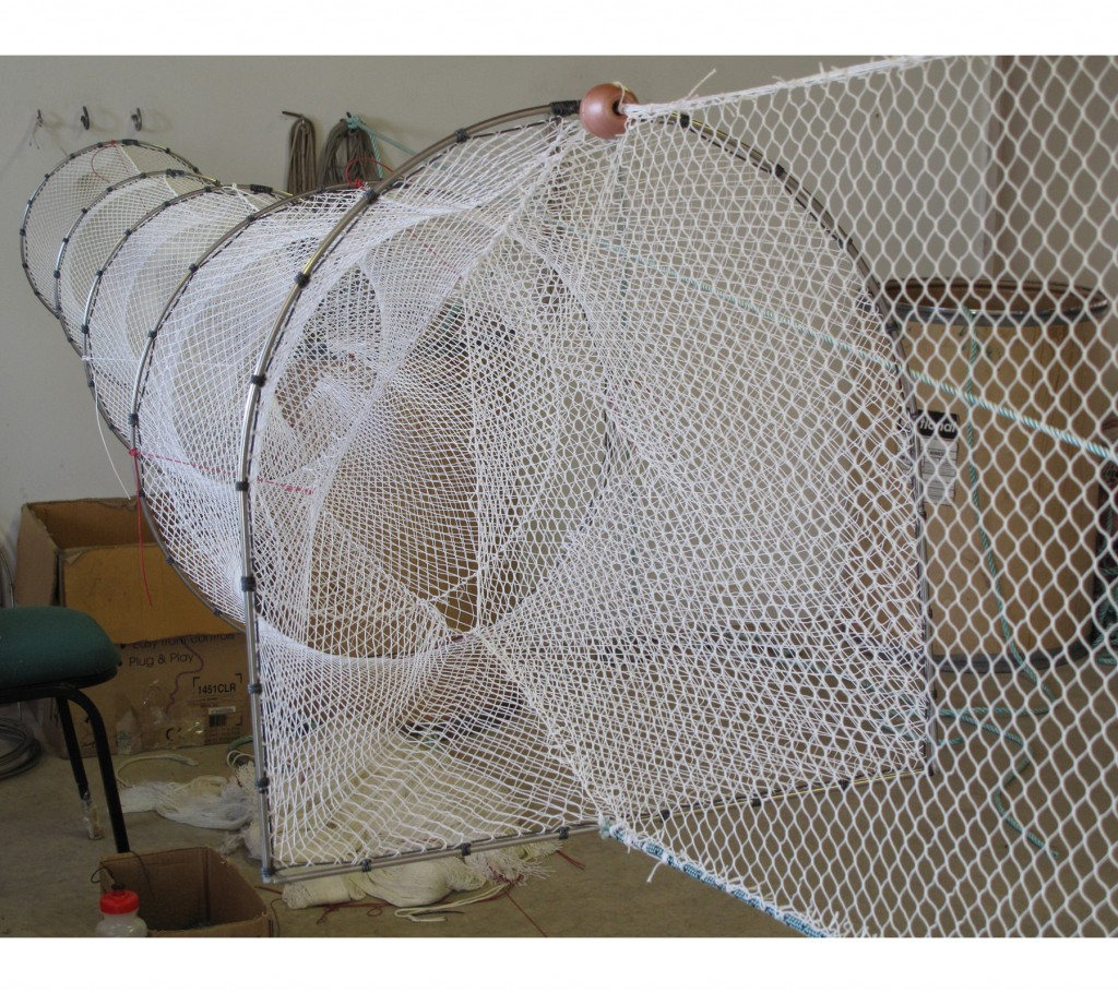 Single fyke nets for eels and fish collins nets ltd for Fishing hoop nets