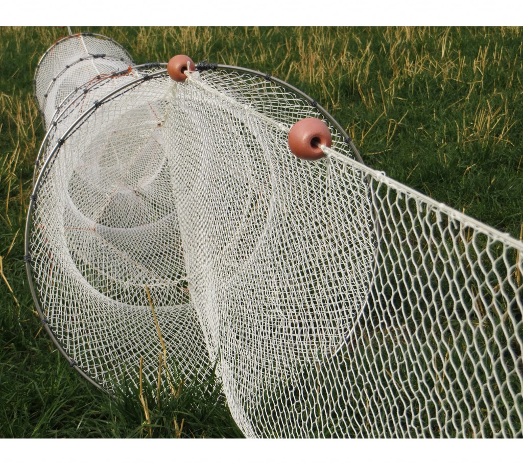 Single fyke nets for eels and fish collins nets ltd for Fish trap net