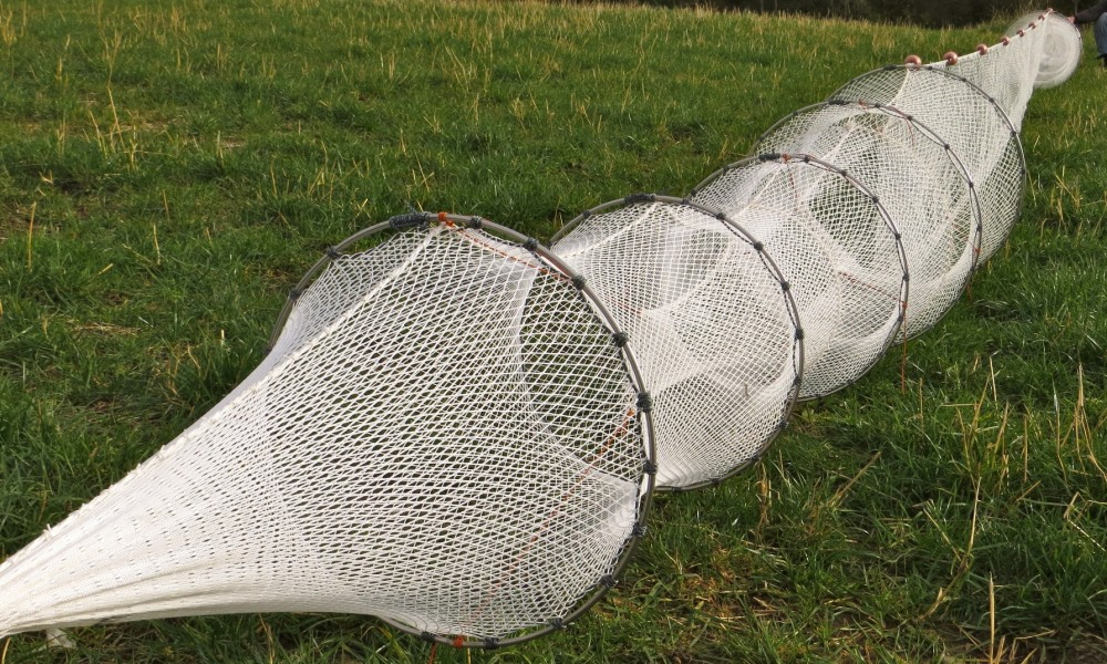 Double fyke nets for eels and fish collins nets ltd for Fish trap net