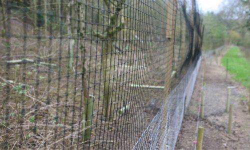Jumbo Release Pen Netting 5ft