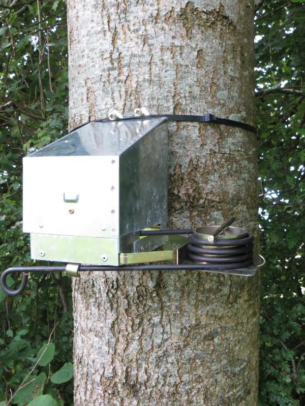 squirrel kill traps search results dunia pictures