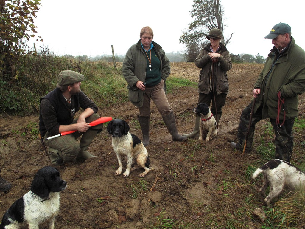 Day Beating on Eastwood Shoot Somerset