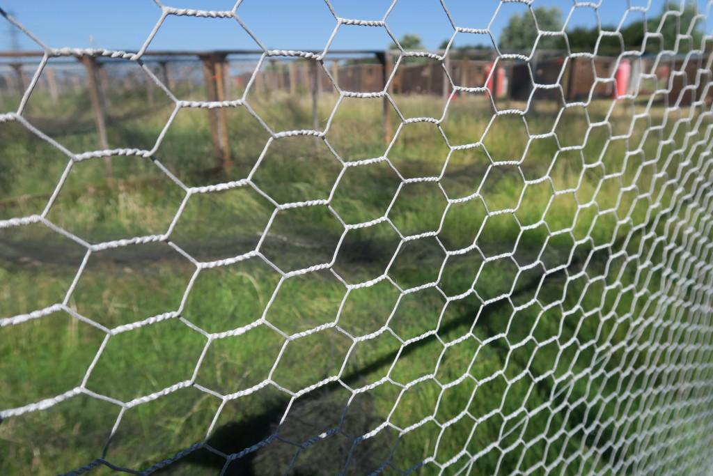 """Galvanised Wire Netting 1"""" (25mm)"""