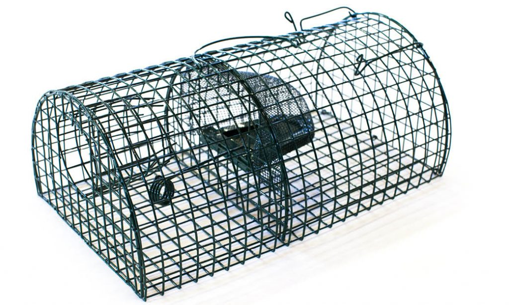 Multi Catch Rat Trap (Monarch)