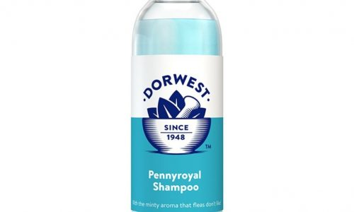 Pennyroyal Dog & Cat Shampoo