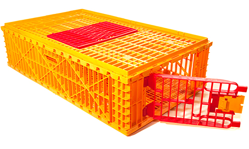 Poultry Transport Crates