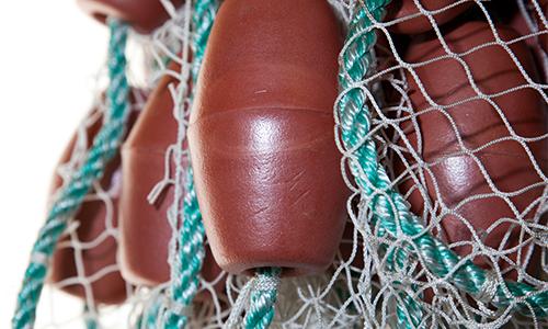 Seine Nets