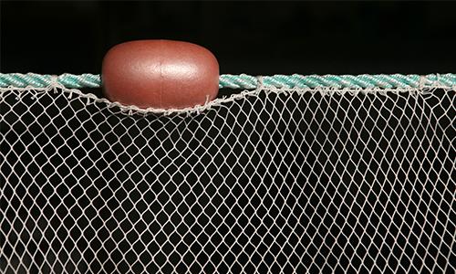 Barrier Stop Nets