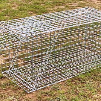 Live catch Fox trap