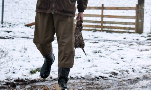 Buckthorn Short Overtrousers Seeland