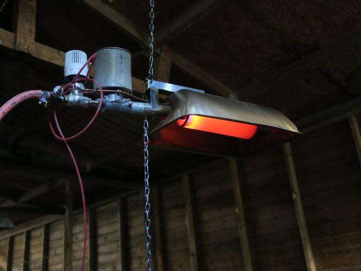 Alke Gas Brooder. Game rearing supplies.
